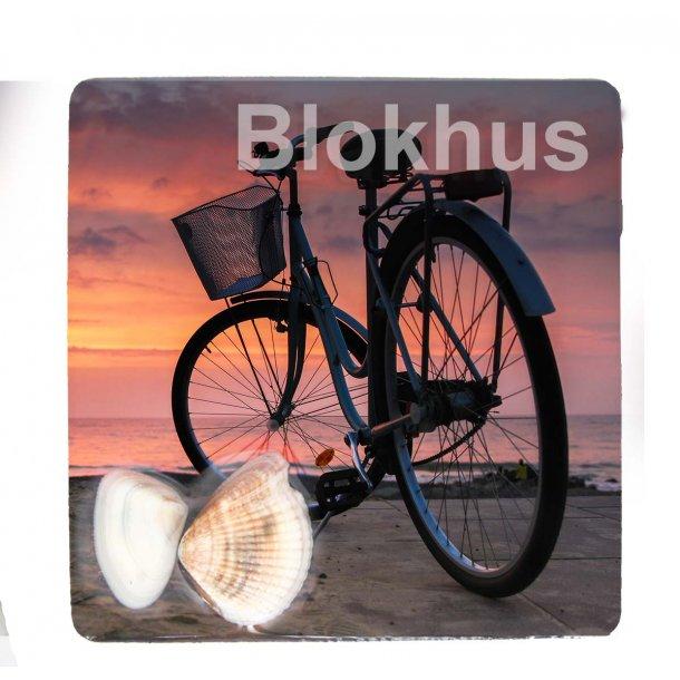 Magnet Med Musling Cykel Vesterhavet Blokhus