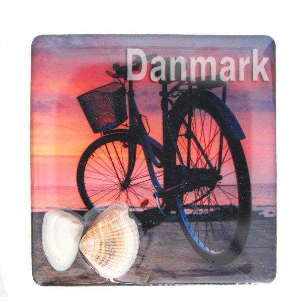 Magnet Med Musling Cykel Vesterhavet
