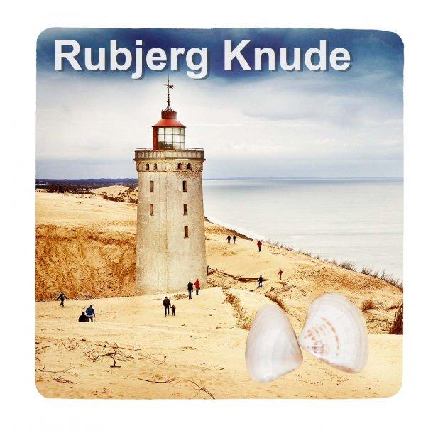 Magnet Med Musling Fyrtårn Vesterhavet Rubjerg Knude