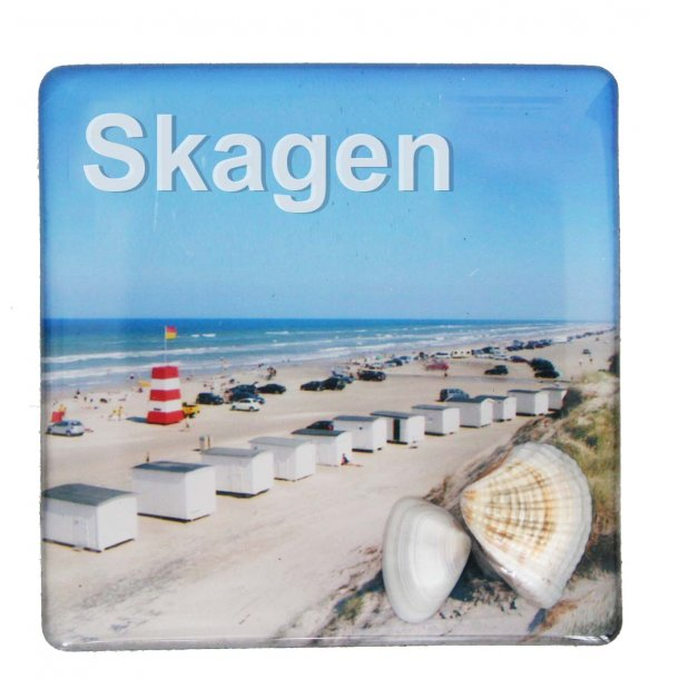 Magnet Med Musling Huse Vesterhavet Skagen