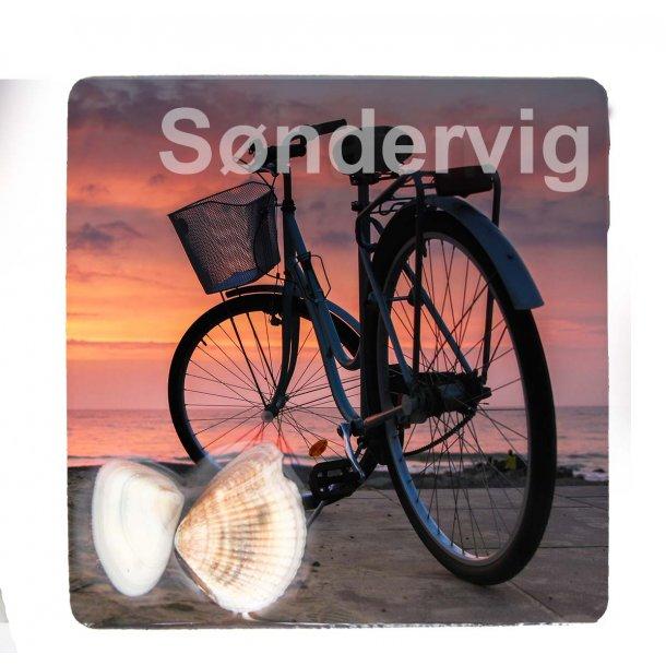 Magnet Med Musling Cykel Vesterhavet Søndervig