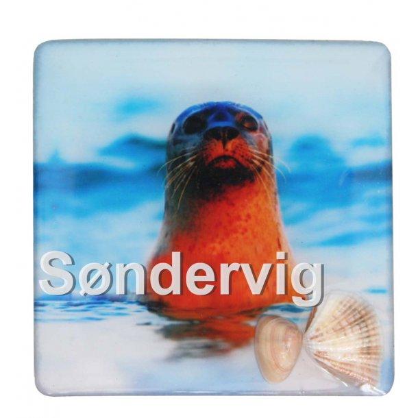 Magnet Med Musling Sæl Vesterhavet Søndervig