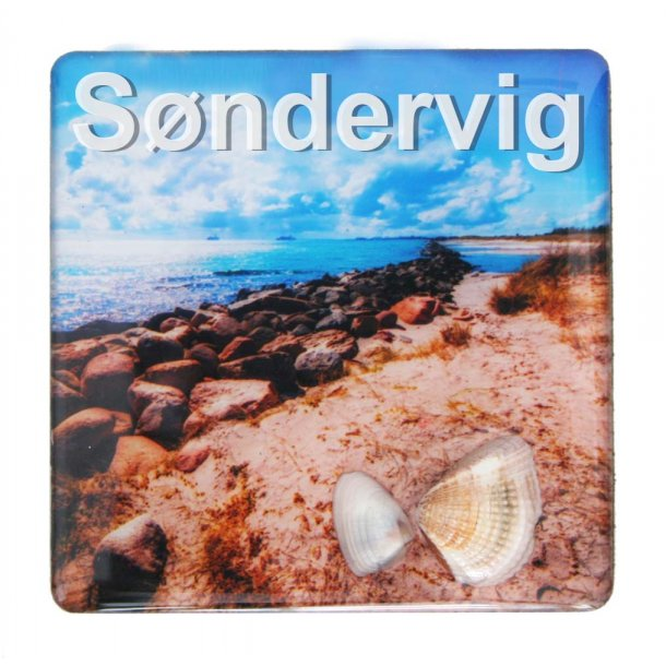 Magnet Med Musling Sten Vesterhavet Søndervig