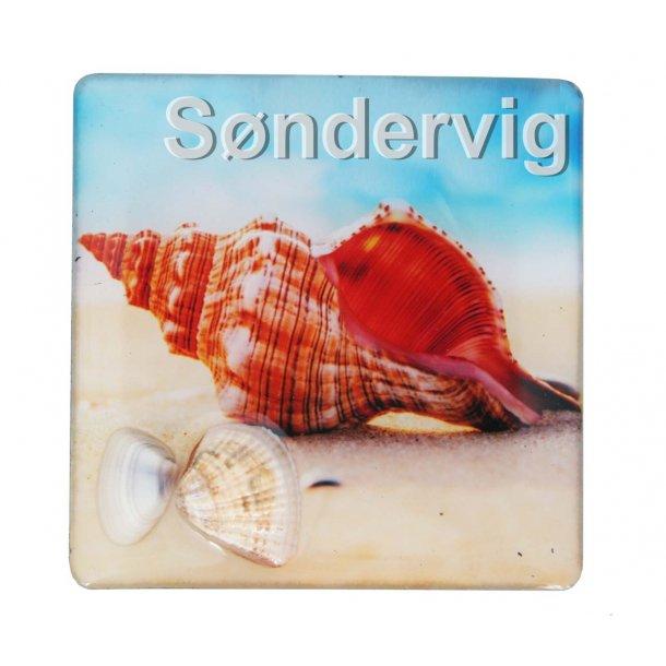 Magnet Med Musling Konkylie Vesterhavet Søndervig