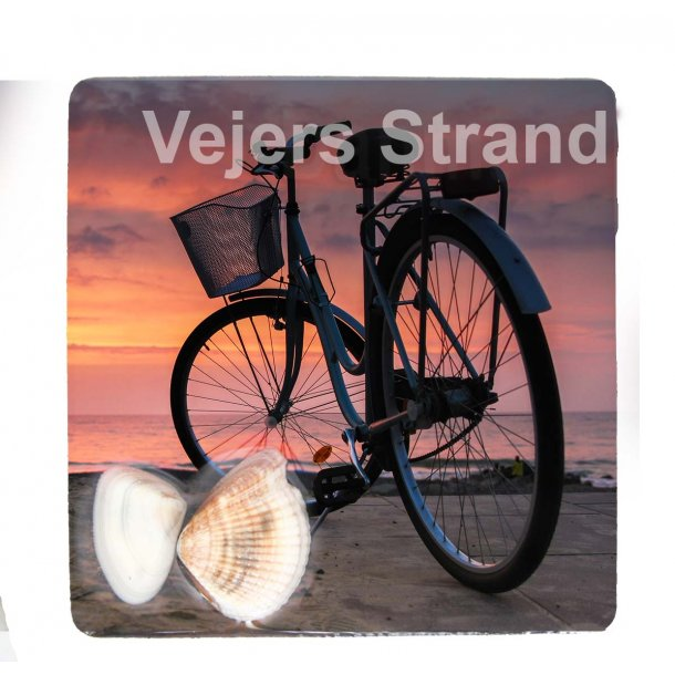 Magnet Med Musling Cykel Vesterhavet Vejers Strand