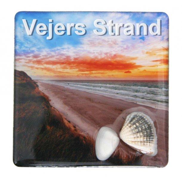Magnet Med Musling Strand Vesterhavet Vejers Strand